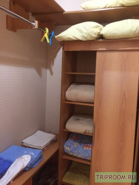 1-комнатная квартира посуточно (вариант № 53583), ул. Флегонта показаньева, фото № 13