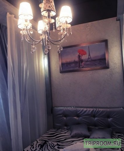 1-комнатная квартира посуточно (вариант № 45839), ул. Крылова улица, фото № 2