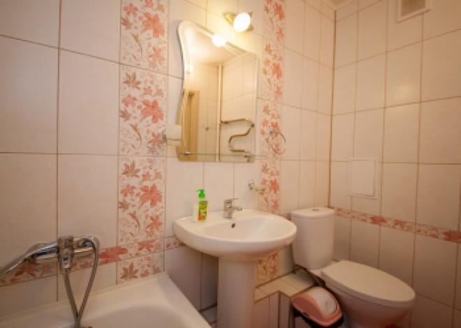 1-комнатная квартира посуточно (вариант № 75), ул. Свободный проспект, фото № 6