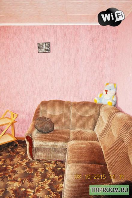 1-комнатная квартира посуточно (вариант № 11707), ул. Нижегородская улица, фото № 2