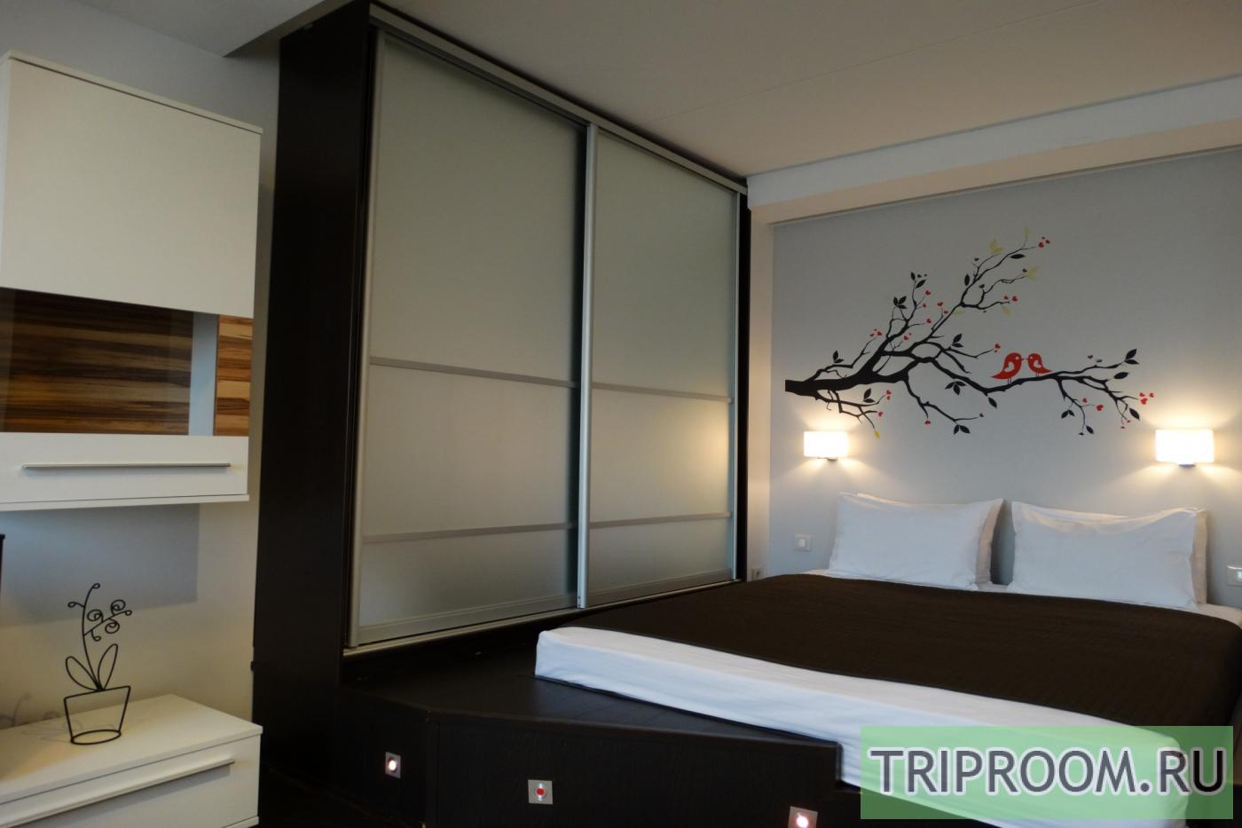 1-комнатная квартира посуточно (вариант № 22157), ул. Архитектора Власова улица, фото № 1