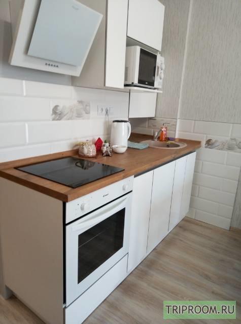 1-комнатная квартира посуточно (вариант № 64459), ул. Революции, фото № 6