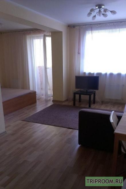 1-комнатная квартира посуточно (вариант № 28633), ул. Большая Садовая улица, фото № 2