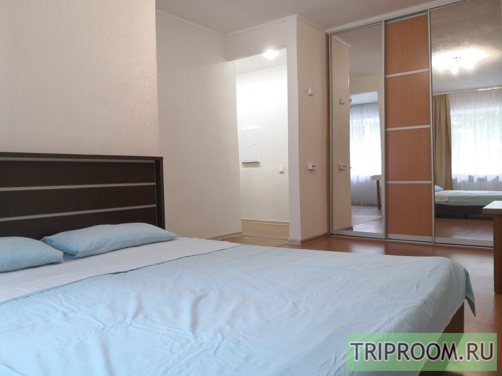 1-комнатная квартира посуточно (вариант № 43768), ул. Елизаровых улица, фото № 3