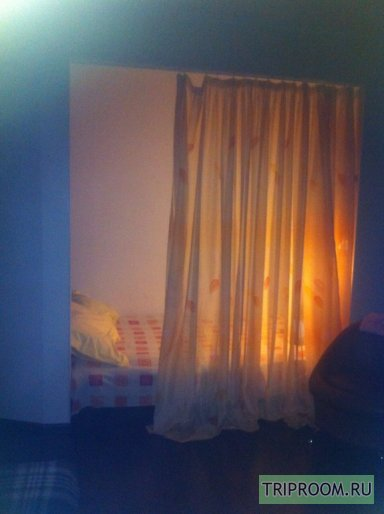 1-комнатная квартира посуточно (вариант № 52929), ул. Кузнечная улица, фото № 10
