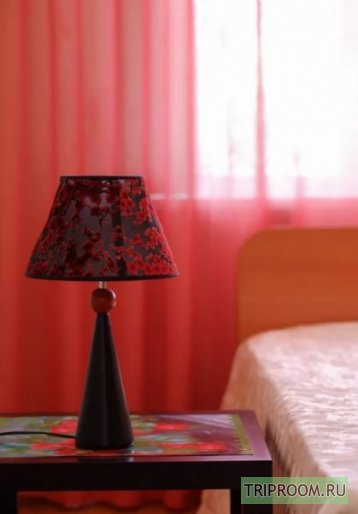 1-комнатная квартира посуточно (вариант № 45027), ул. Кирова проспект, фото № 1