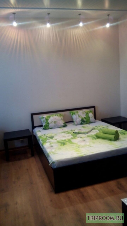1-комнатная квартира посуточно (вариант № 66950), ул. Пр. Ленина, фото № 2