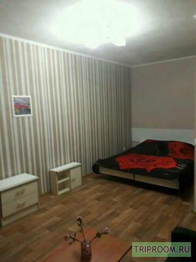 1-комнатная квартира посуточно (вариант № 44719), ул. Розы Люксембург улица, фото № 1