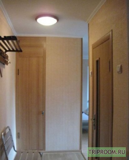 1-комнатная квартира посуточно (вариант № 45431), ул. Елизаровых улица, фото № 3