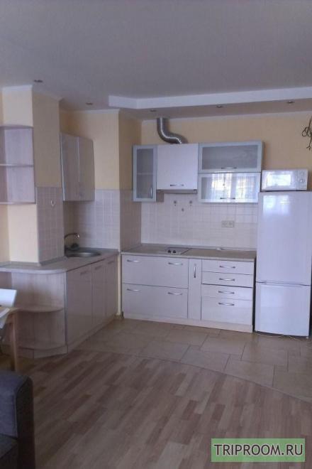1-комнатная квартира посуточно (вариант № 28633), ул. Большая Садовая улица, фото № 5