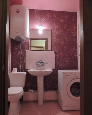 1-комнатная квартира посуточно (вариант № 156), ул. Сибирская улица, фото № 5