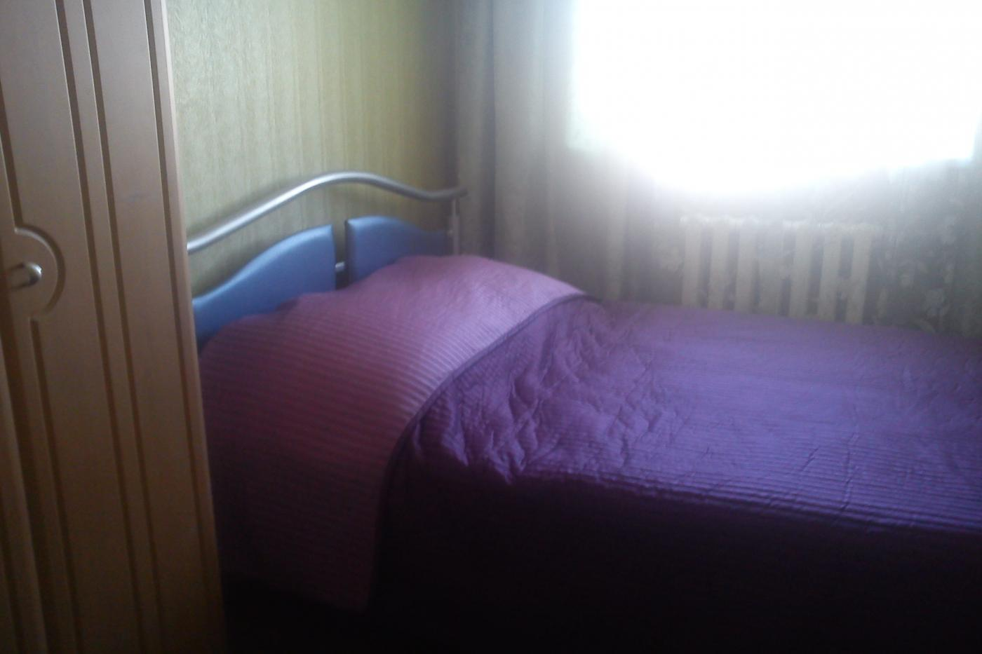 1-комнатная квартира посуточно (вариант № 2448), ул. Революции проспект, фото № 5