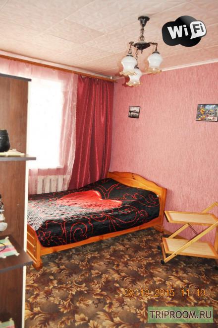 1-комнатная квартира посуточно (вариант № 11707), ул. Нижегородская улица, фото № 12