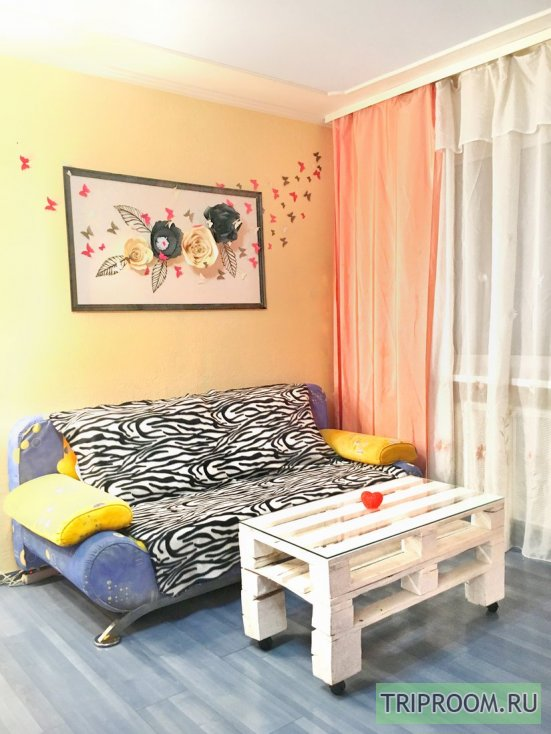 1-комнатная квартира посуточно (вариант № 32990), ул. Петропавловская улица, фото № 8