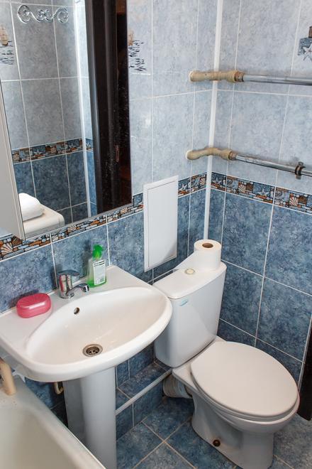 1-комнатная квартира посуточно (вариант № 2281), ул. Дзержинского проспект, фото № 9
