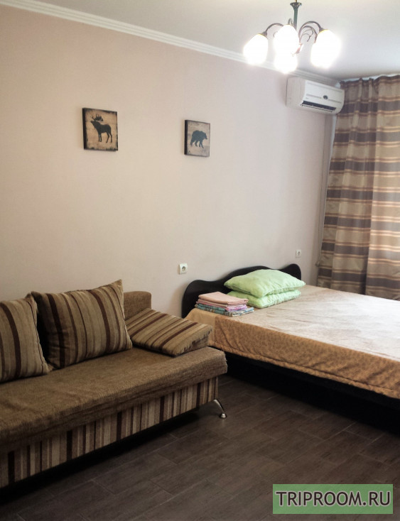 1-комнатная квартира посуточно (вариант № 33583), ул. Ставропольская улица, фото № 5