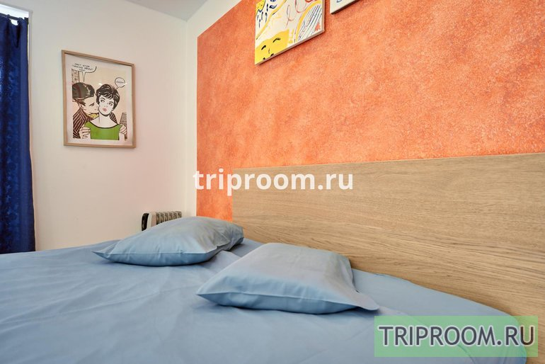2-комнатная квартира посуточно (вариант № 51576), ул. Рубинштейна улица, фото № 15