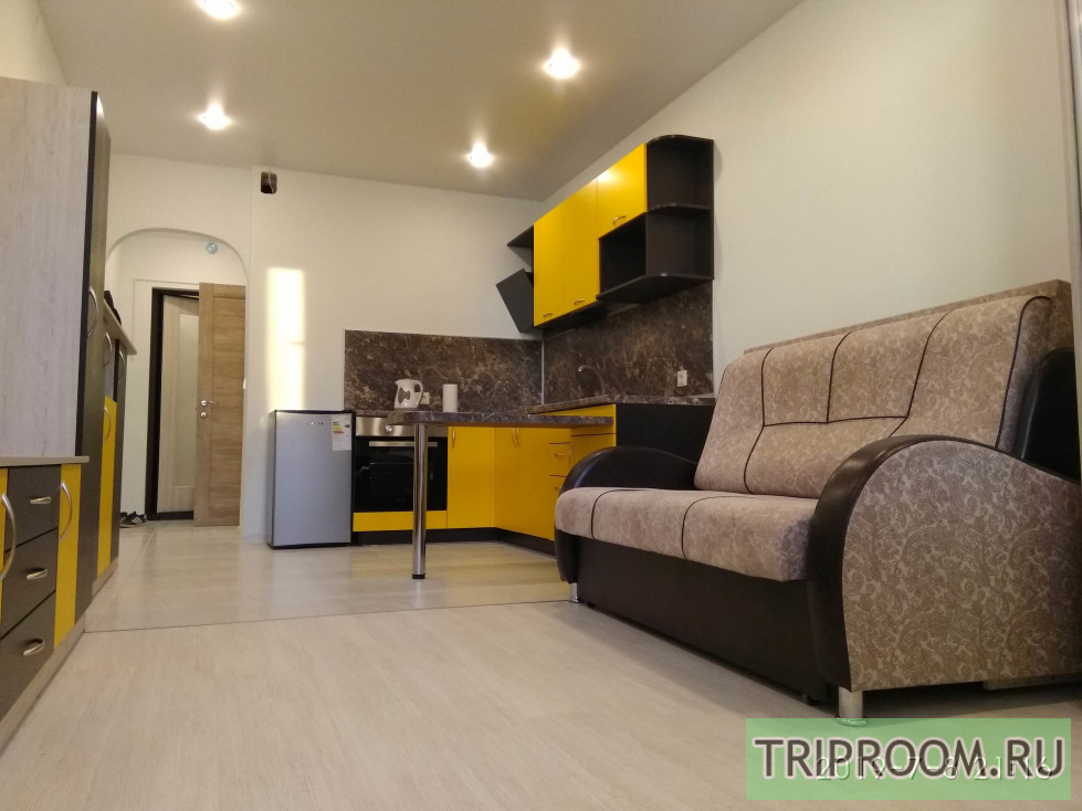 1-комнатная квартира посуточно (вариант № 67581), ул. Новгородский проспект, фото № 1