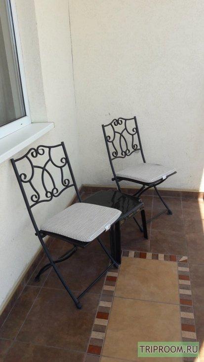 1-комнатная квартира посуточно (вариант № 15845), ул. Сенявина улица, фото № 14