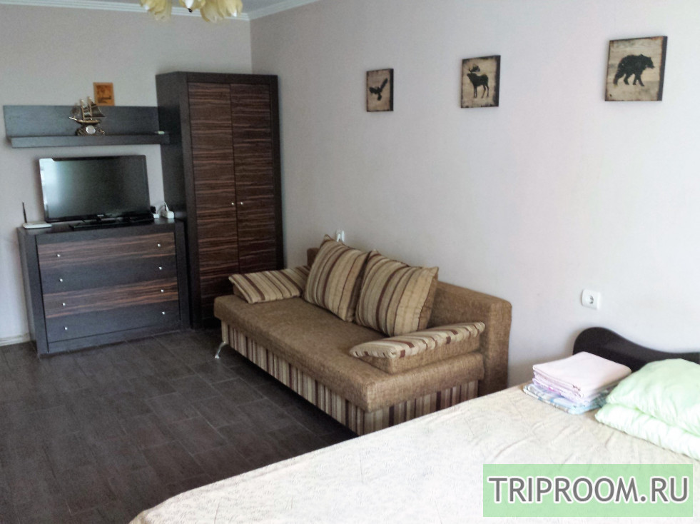1-комнатная квартира посуточно (вариант № 33583), ул. Ставропольская улица, фото № 2