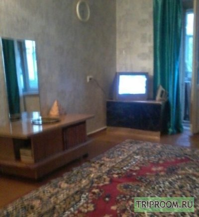 1-комнатная квартира посуточно (вариант № 44521), ул. Некрасова улица, фото № 2