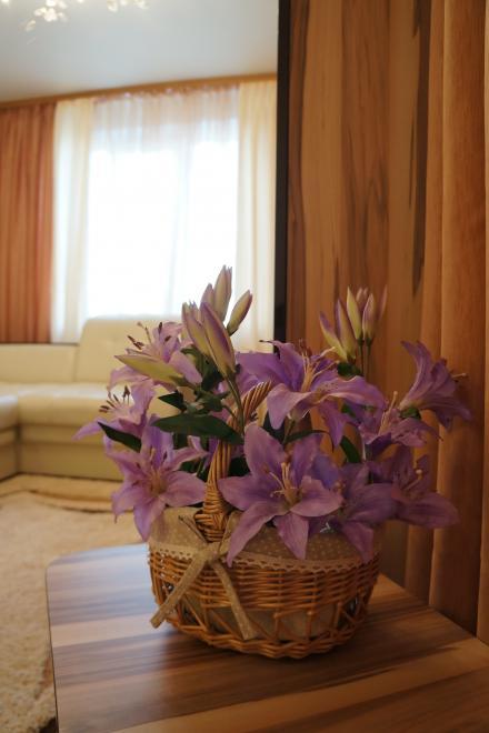 1-комнатная квартира посуточно (вариант № 584), ул. Победы проспект, фото № 6