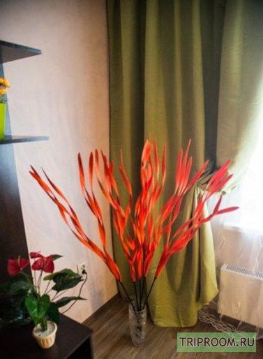 1-комнатная квартира посуточно (вариант № 47535), ул. Суворова улица, фото № 2