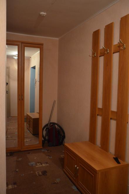 1-комнатная квартира посуточно (вариант № 3904), ул. Владимира Невского улица, фото № 5