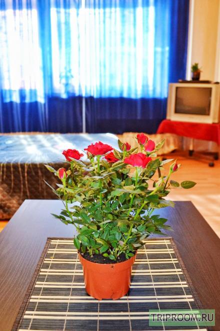 1-комнатная квартира посуточно (вариант № 32991), ул. Докучаева улица, фото № 7