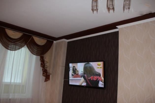 1-комнатная квартира посуточно (вариант № 3508), ул. Пушкина улица, фото № 5