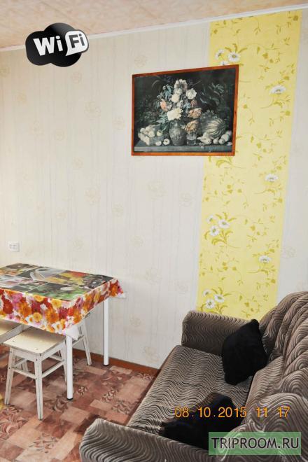 1-комнатная квартира посуточно (вариант № 11707), ул. Нижегородская улица, фото № 13