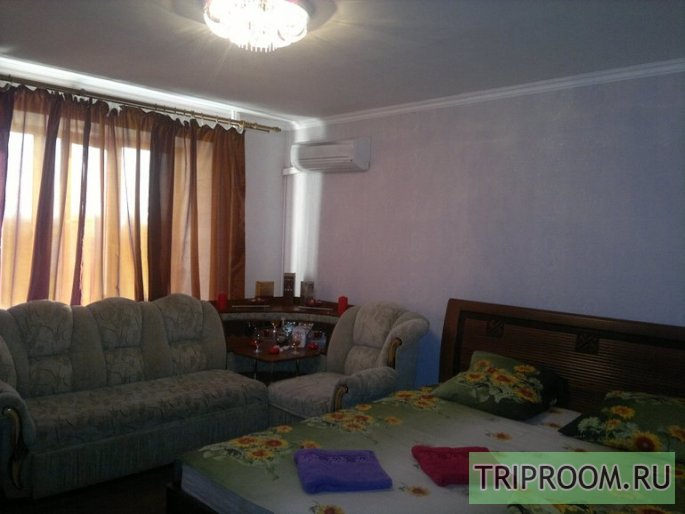 1-комнатная квартира посуточно (вариант № 10603), ул. Николая Панова улица, фото № 8