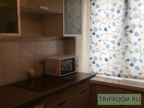 1-комнатная квартира посуточно (вариант № 35943), ул. Уфимцева улица, фото № 4