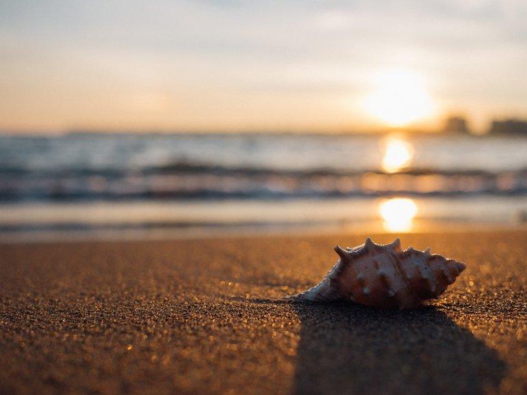 пляжи поселка Джугба